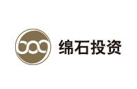 中迪投資logo