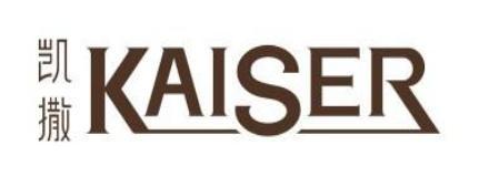 凱撒文化logo