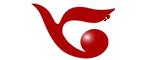 飞力达logo