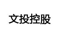 文投控股logo
