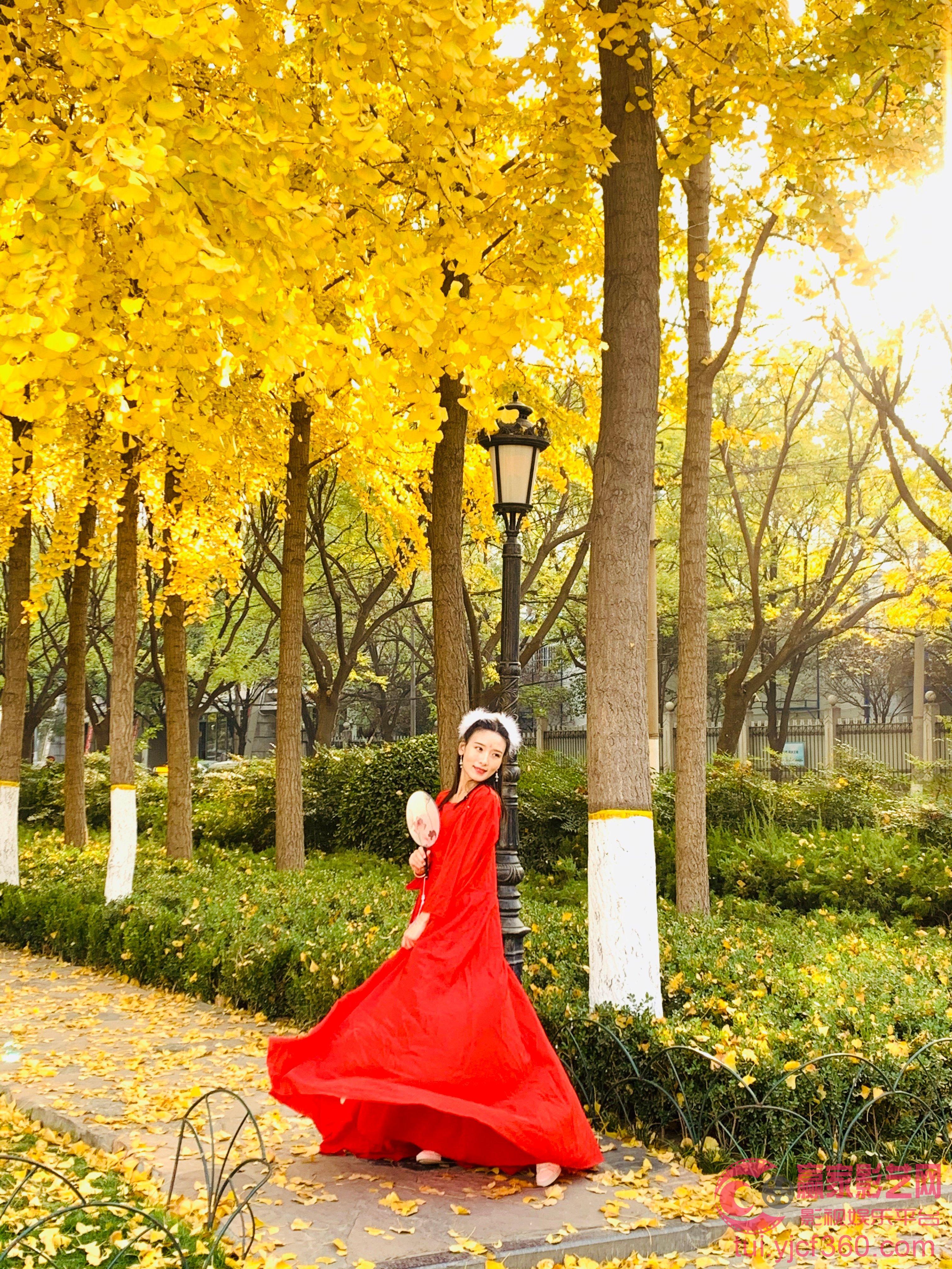 仝爱爱秋天的舞姿